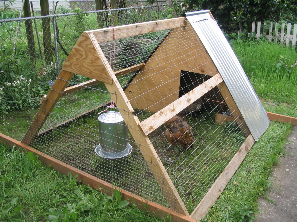 Instructions how to build a chicken coop step by step for How to build a chicken hutch